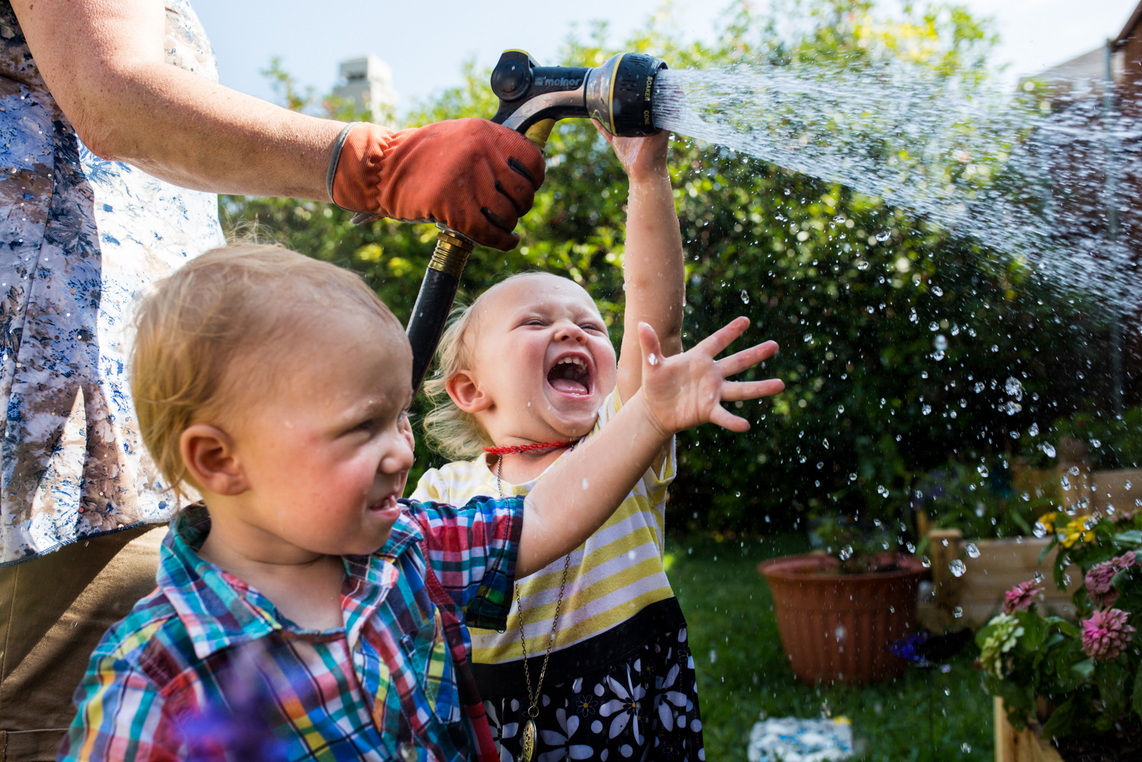 Lawren Rose Photography takes a photo of two year old twins laughing and playing with water in their backyard in McKinney Texas