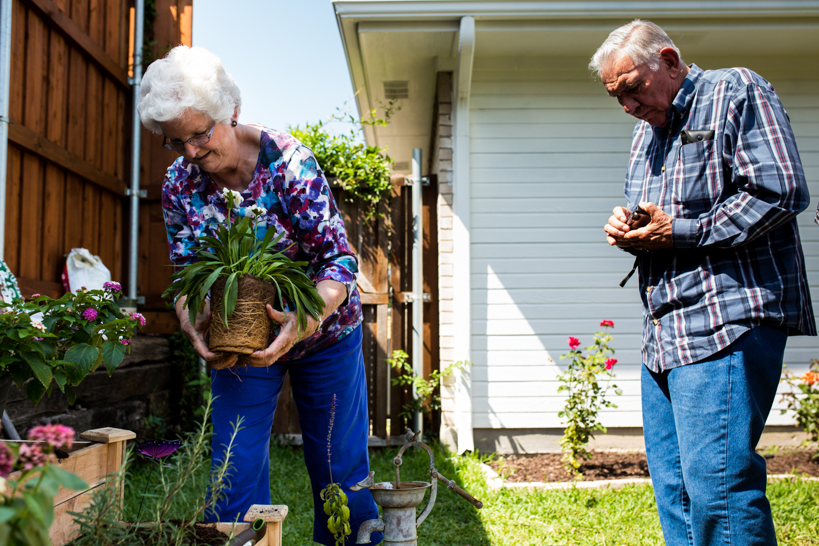 elderly people plant a flower in a garden