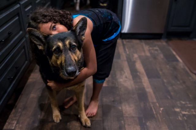 Lawren Rose Photography captures an environmental portrait of a girl and her german shephard dog
